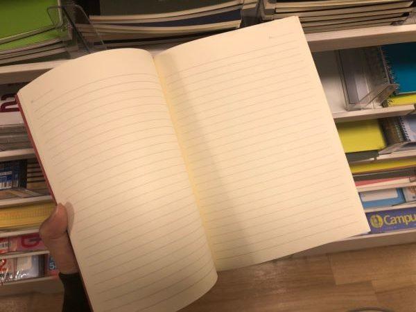 キラキラかわいいノートの中の様子