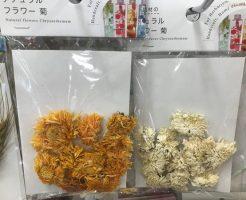 ナチュラルフラワー 菊